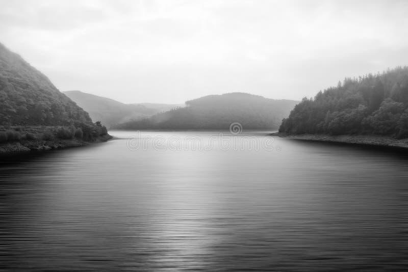 Черно-белый ландшафт туманного озера окруженный деревьями стоковое изображение rf