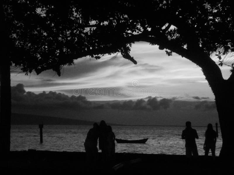 Черно-белый заход солнца на пляже стоковые изображения