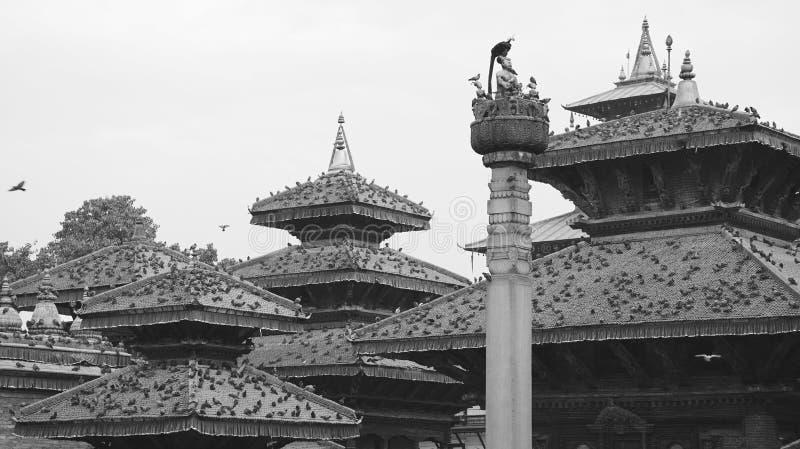 Черно-белый Непал (серии) стоковые изображения