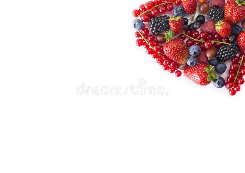 Черно-голубая и красная еда Зрелые голубики, красные смородины, поленики, клубники, крыжовники на белой предпосылке стоковое изображение