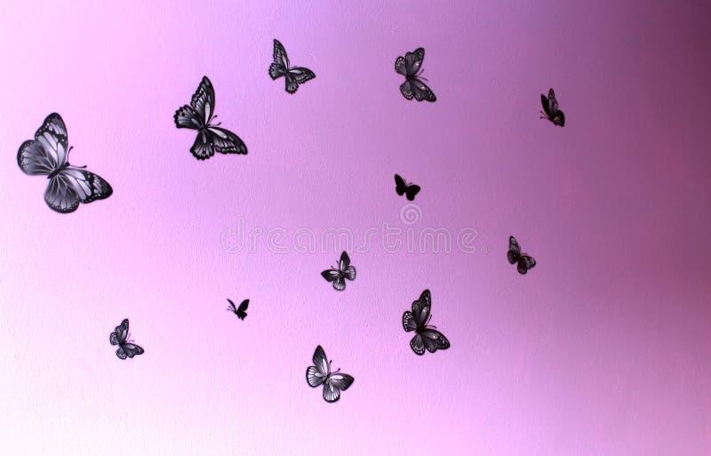 Черные бабочки летают на фиолетовую стену в различных направлениях стоковые фото