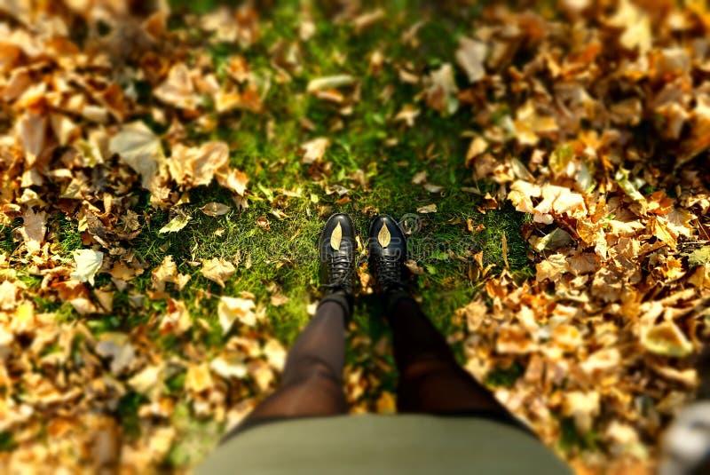 Черные ботинки на зеленой траве и желтой листве стоковое изображение rf