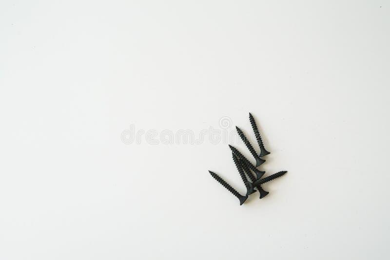 Черные винты само-выстукивая винтов одинаковых размеров изолированных на белой предпосылке стоковое изображение rf