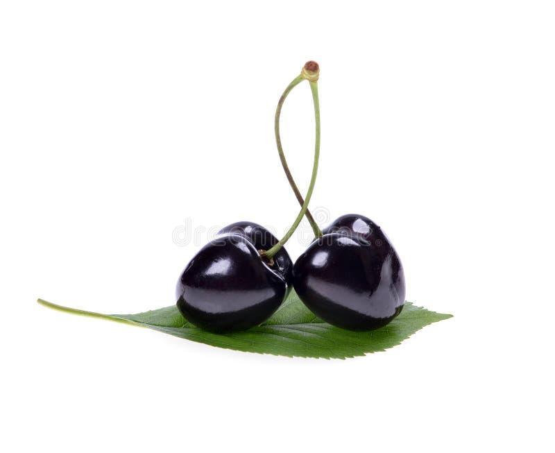 черные вишни зрелые стоковое фото