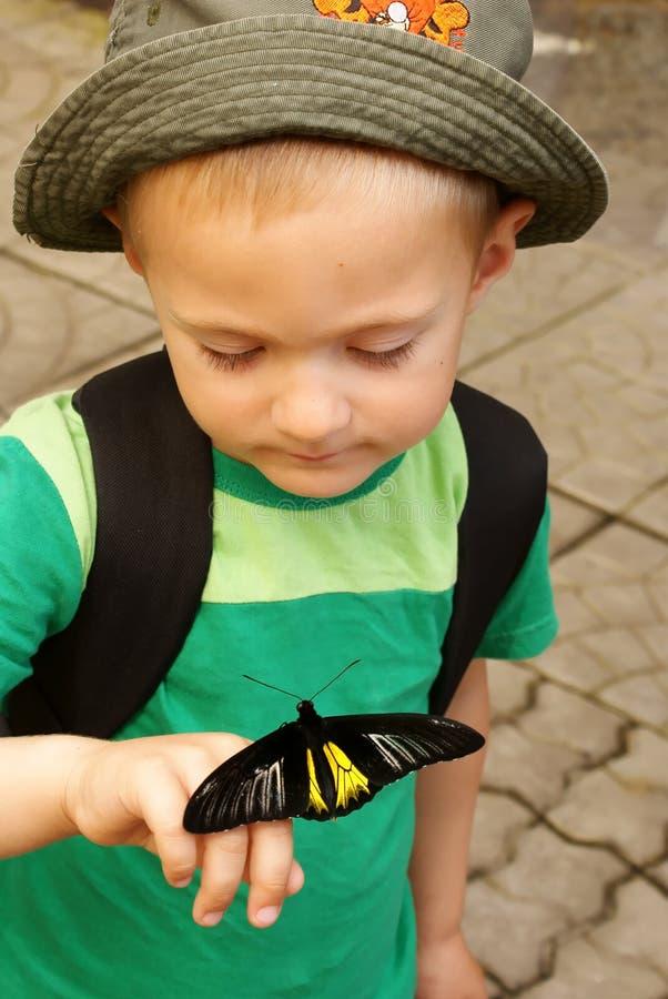 черные владения бабочки мальчика стоковые изображения