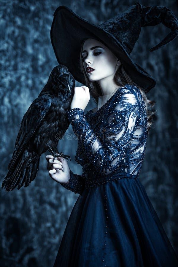 Черные ворон и ведьма стоковые фотографии rf