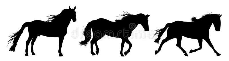 черные движения лошади иллюстрация вектора
