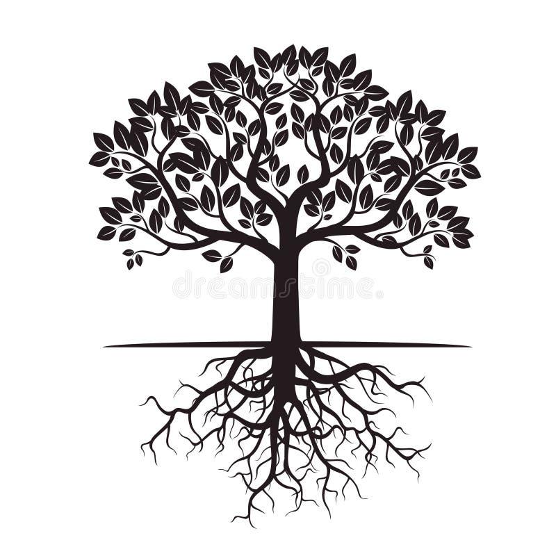 Черные дерево и корни также вектор иллюстрации притяжки corel иллюстрация штока