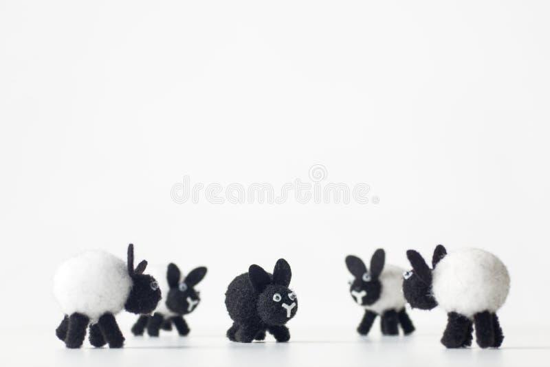 черные овцы семьи стоковое фото rf