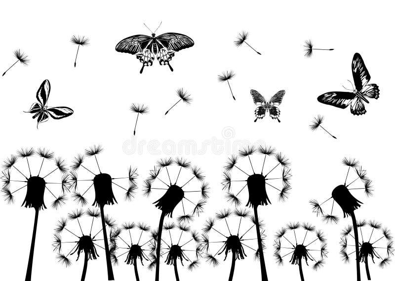 черные одуванчики бабочек иллюстрация штока