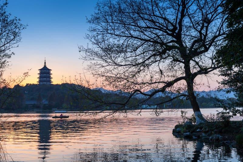 Черные силуэт деревьев и пагода традиционного китайския стоковое изображение