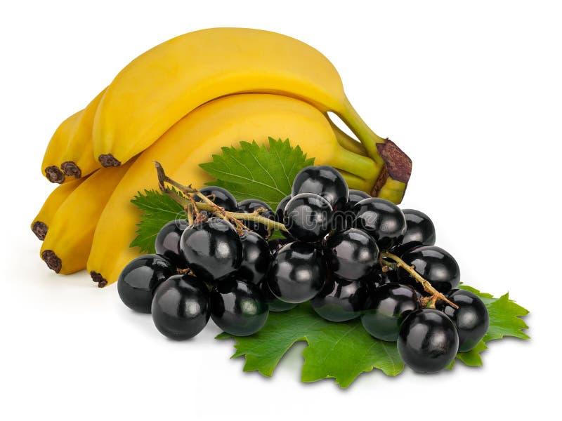 Черные Muscat и бананы стоковая фотография