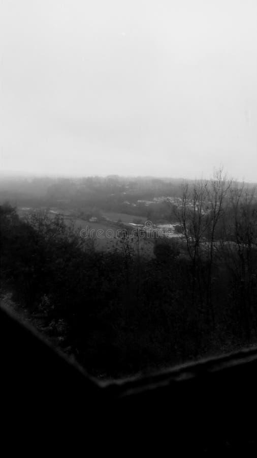 Черный & белый взгляд стоковое фото