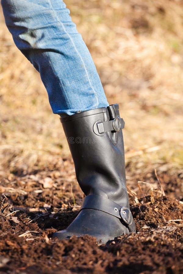 черный ботинок стоковые изображения rf