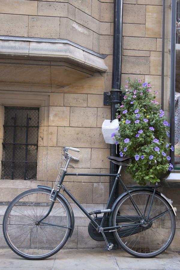 Черный велосипед в Кембридже стоковое фото