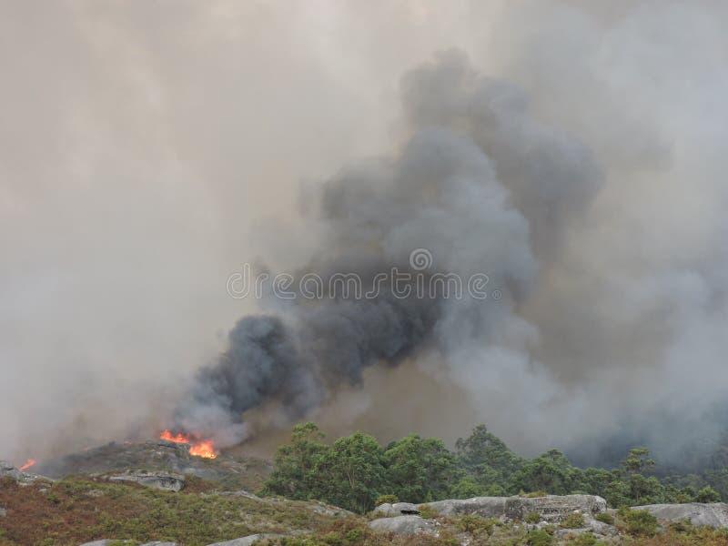 Черный дым от огня стоковая фотография rf