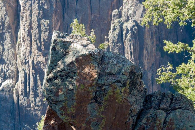 Черный каньон национального парка Gunnison стоковые фото