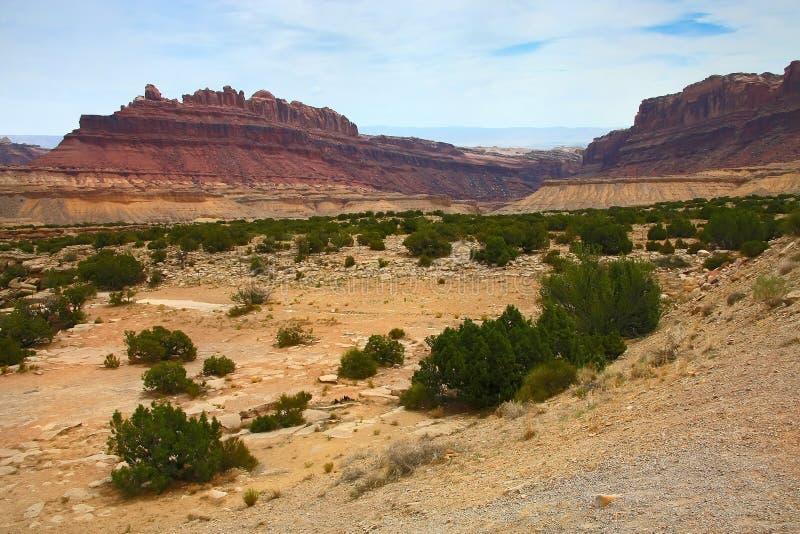 Черный каньон дракона стоковые фотографии rf