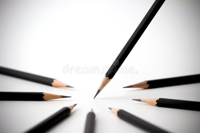 Черный карандаш стоя вне от толпы собратьев множества идентичных черных белизна успеха дела изолированная принципиальной схемой стоковое изображение
