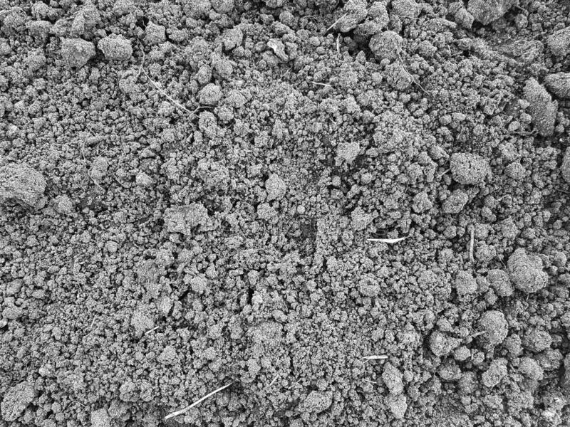Черный конец почвы вверх стоковое фото rf