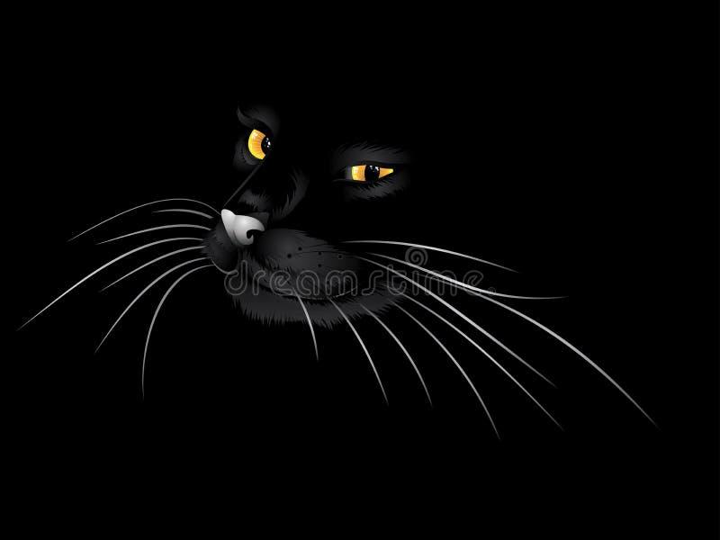 Черный кот в темноте иллюстрация вектора
