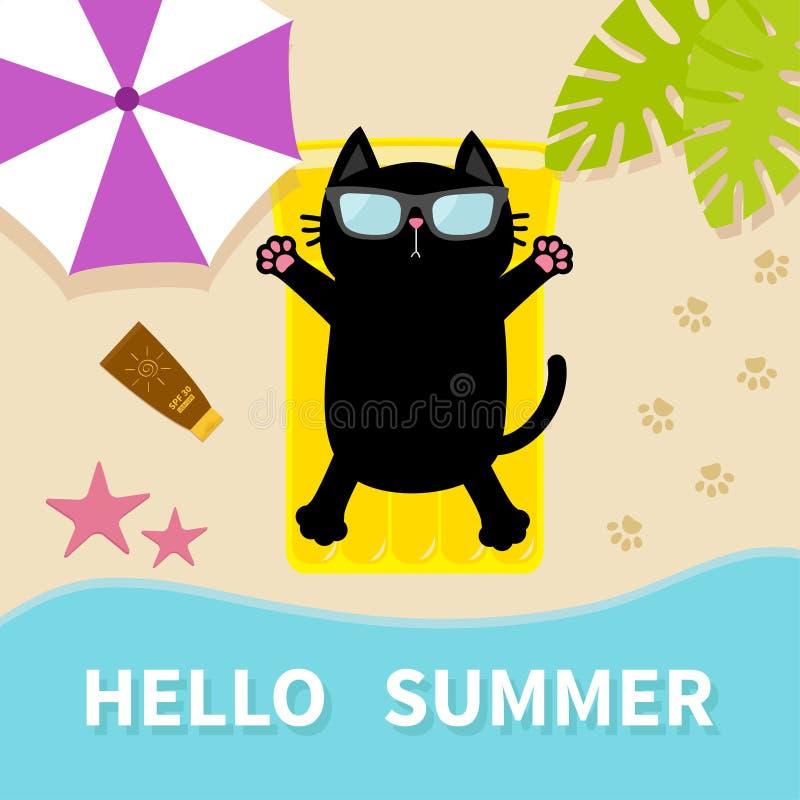 Черный кот загорая на тюфяке воды бассейна воздуха желтого цвета пляжа Здравствуйте! лето Верхний вид с воздуха Пристаньте к бере бесплатная иллюстрация