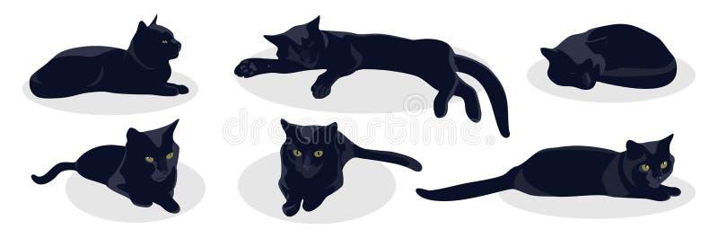 Черный кот лежит в различных представлениях изолированный на белой предпосылке иллюстрация штока