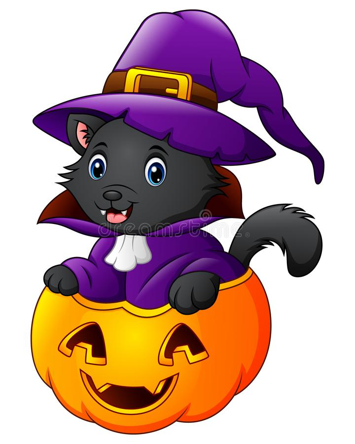 Черный кот одетый как ведьма на тыкве хеллоуина иллюстрация вектора