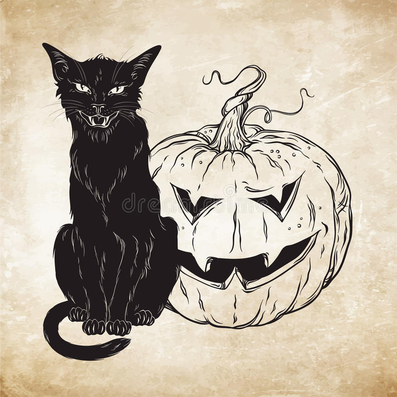 Черный кот сидя с тыквой хеллоуина над старой иллюстрацией вектора предпосылки бумаги grunge Животное знакомого духа ведьм Wic иллюстрация штока