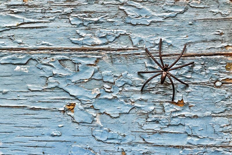 Черный паук на старой деревянной предпосылке halloween изолировал белизну символа стоковые изображения rf