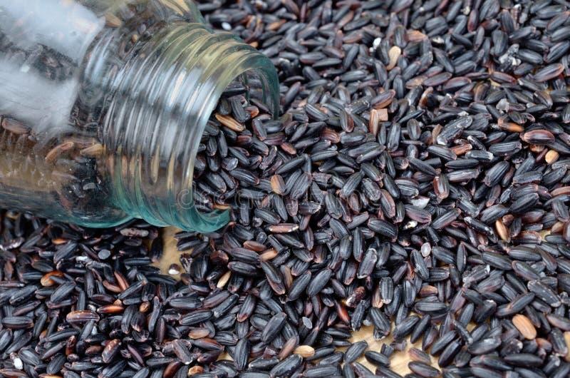 Черный рис на таблице стоковые изображения