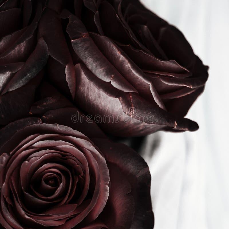черный розовый цветок - свадьба, праздник и флористическим введенная в моду садом концепция стоковое изображение rf