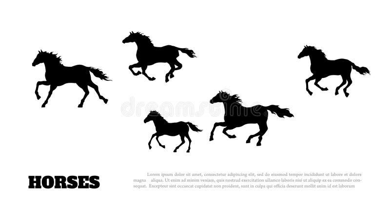 Черный силуэт идущих лошадей Изолированный детальный чертеж табуна мустанга на белой предпосылке landscape западное иллюстрация вектора