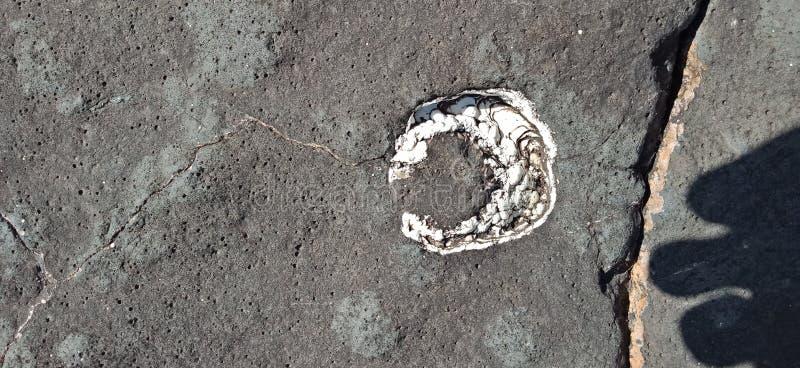 Черный утес с белой природой камня и текстуры благоустраивает предпосылку стоковое фото