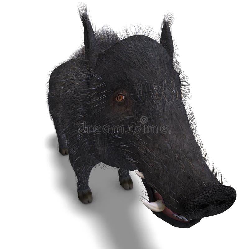 черный хряк bristled опасный stiff иллюстрация штока