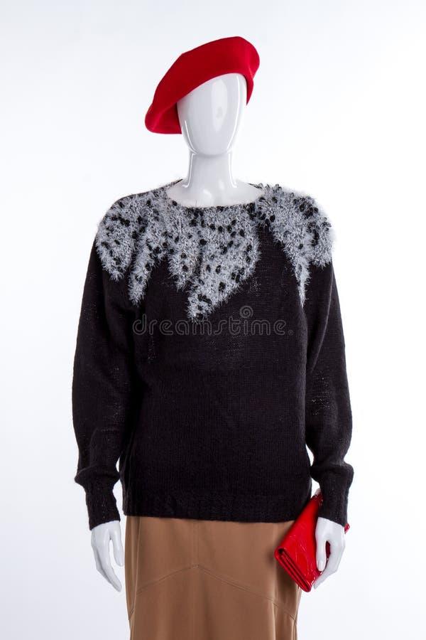 Черный элегантный свитер и коричневая юбка стоковые изображения rf