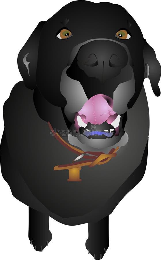черный labrador громко вне пея иллюстрация штока