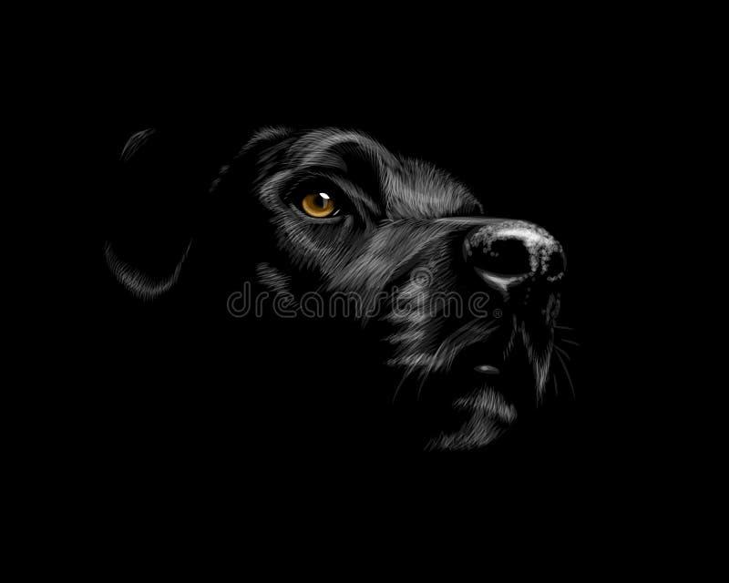 черный retriever labrador иллюстрация вектора