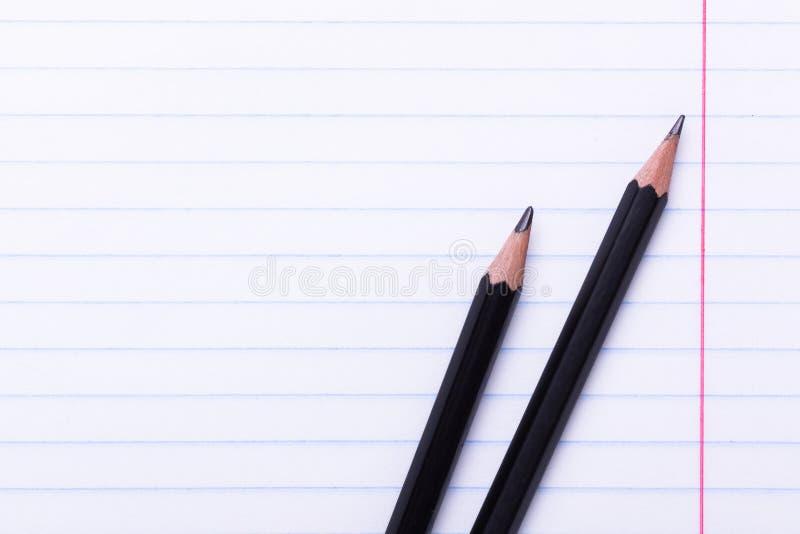 2 черных карандаша графита на белом листе в линии космосе экземпляра назад в школу, концепцию образования стоковое изображение rf