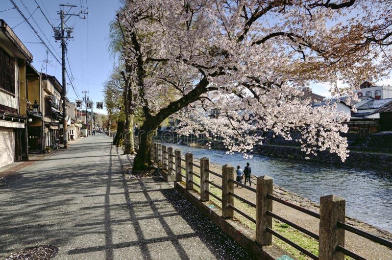 Черри Блосом в Такаяме, Япония стоковая фотография rf