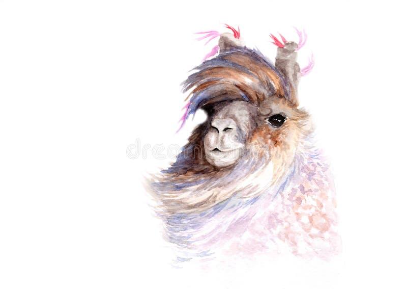 Чертеж акварели лама иллюстрация штока