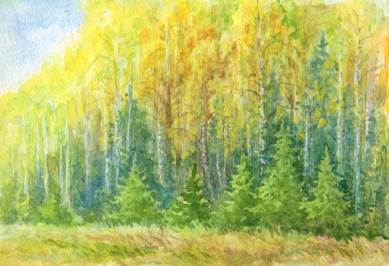 Чертеж акварели ландшафта леса осени бесплатная иллюстрация