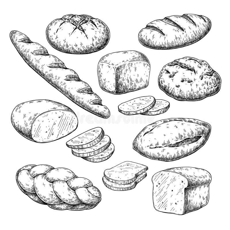 Чертеж вектора хлеба Эскиз продукта хлебопекарни Винтажная еда иллюстрация штока
