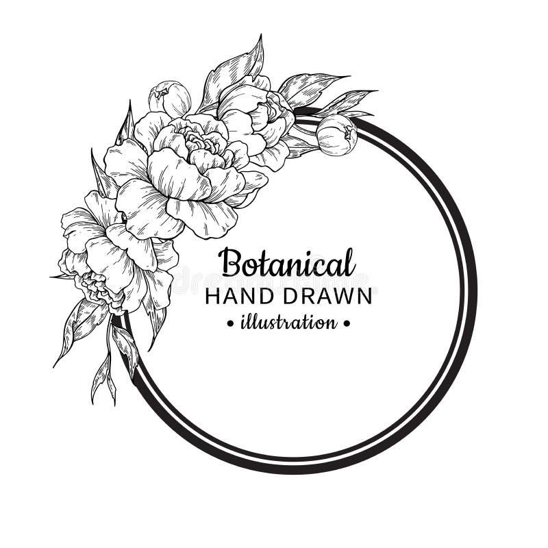 Чертеж рамки вектора цветка винтажный Пион, роза, листья и ber иллюстрация штока