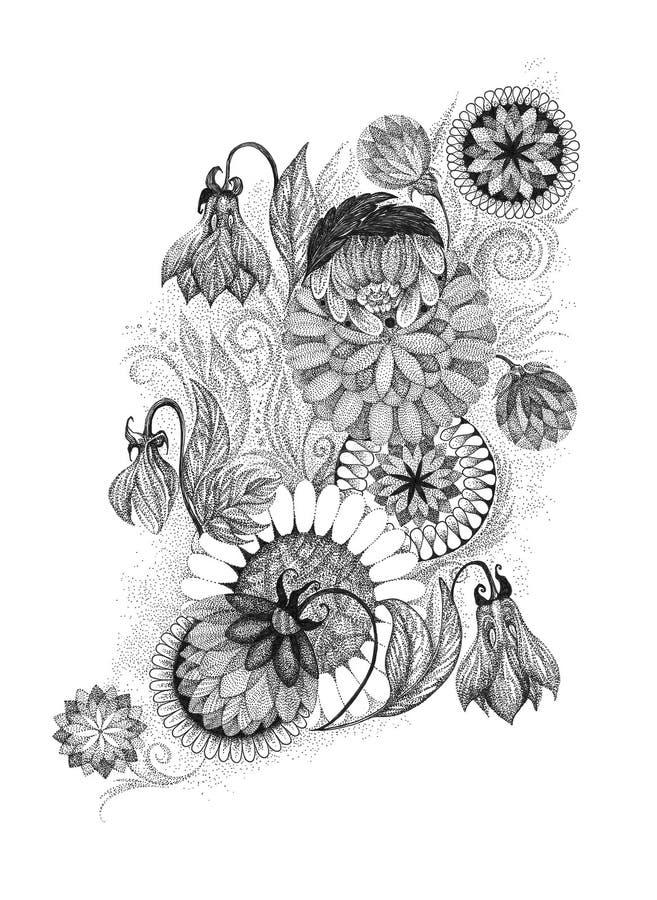 Чертеж руки, орнаменты графического изображения флористические иллюстрация штока