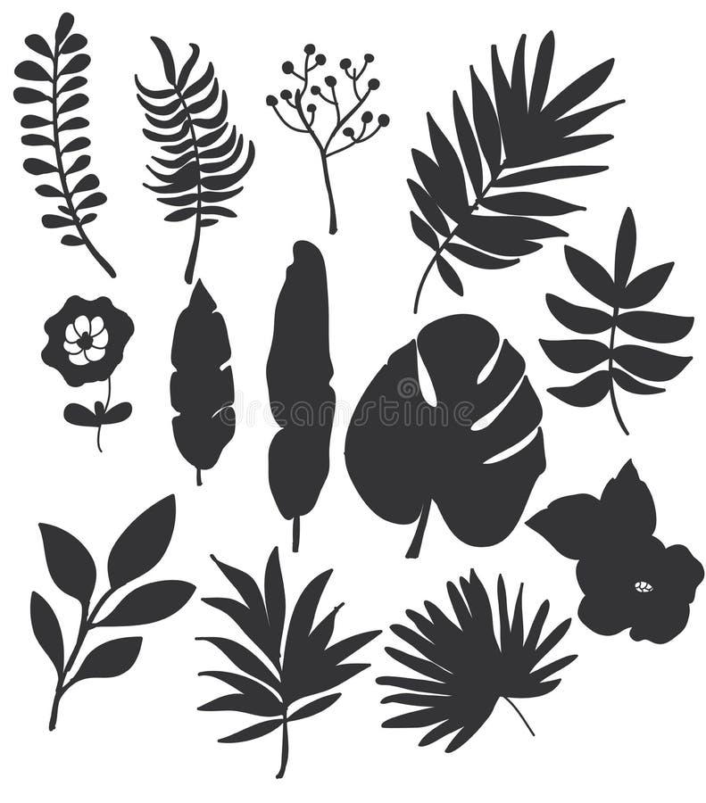 чертеж monochrome установленный цветков и листьев на белой предпосылке иллюстрация штока