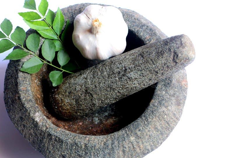 Чеснок и свежие листья карри в каменных миномете и пестике стоковые фотографии rf
