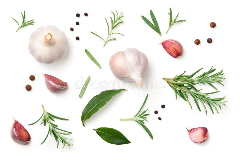 Чеснок, Розмари, листья залива, Allspice и перец изолированные на Wh стоковая фотография rf