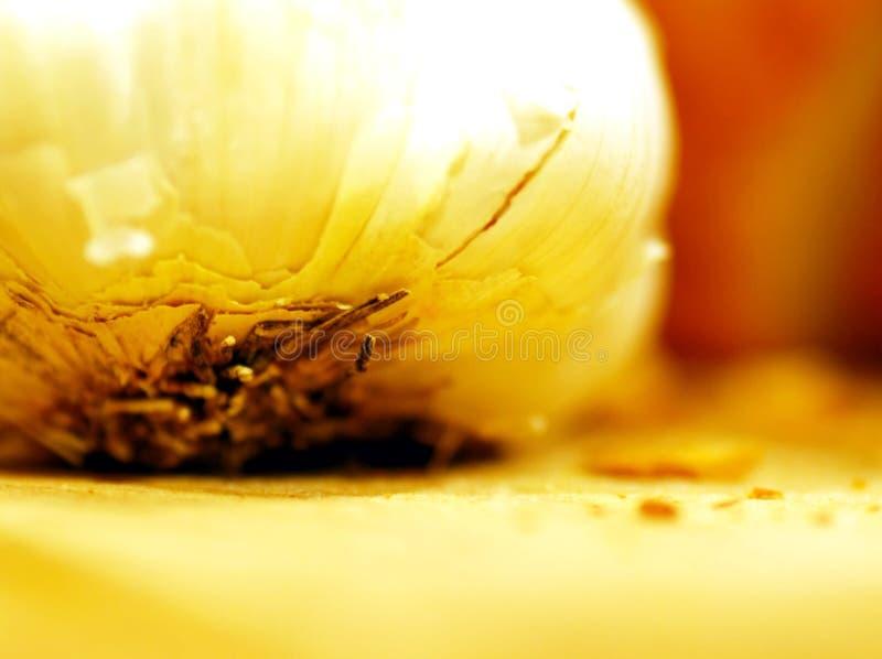 чеснок clove стоковая фотография rf
