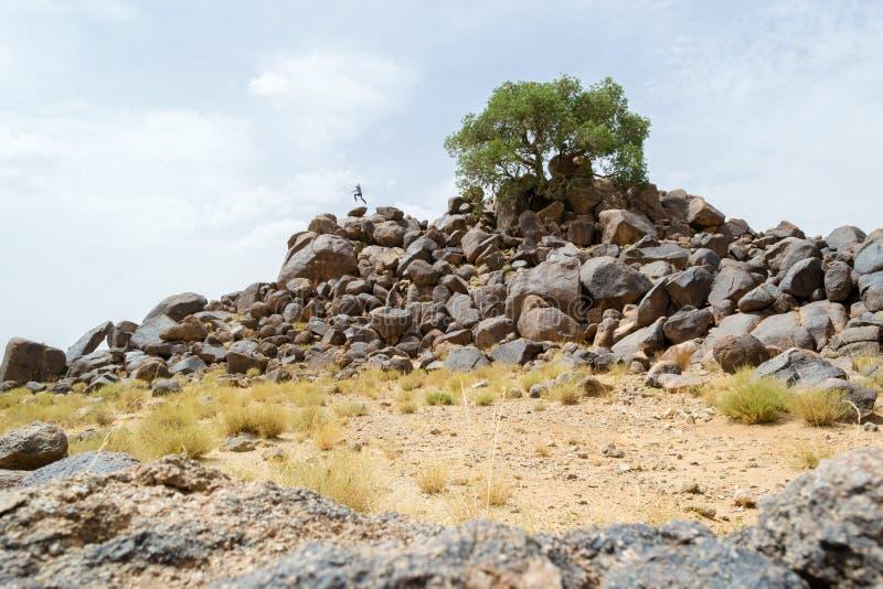 Человек бежать и скача на утесы пустыни стоковое изображение rf